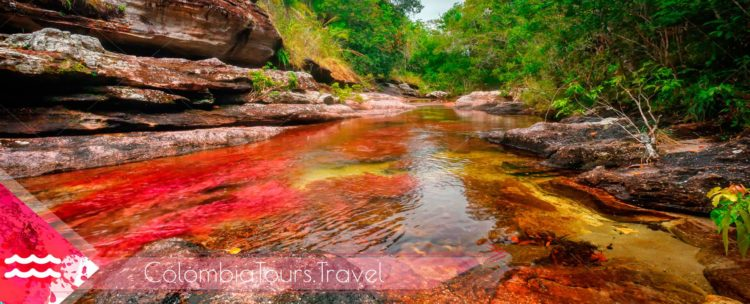 Travel Guide Caño Cristales Colombia, Meta, La Macarena, Colombia River, travel plans, recommendations for travel to Caño Cristales, where it is, Travel