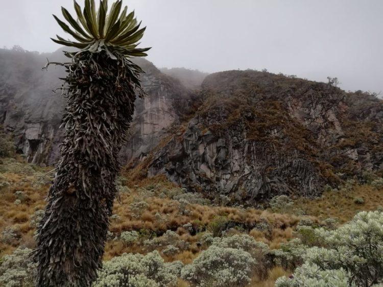 Nevado Santa Isabel - Parque Nacional Natural los Nevados - Colombia - Trekking - Alta Montaña