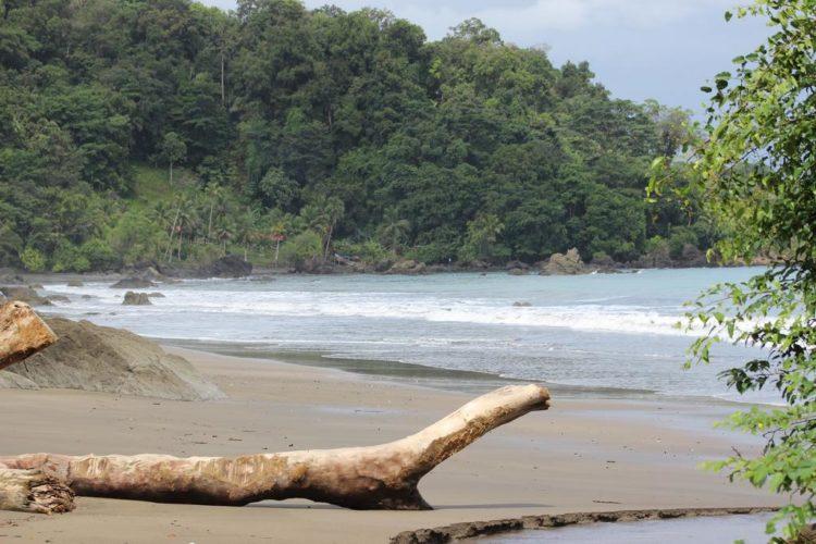 Paisaje - Nuqui Choco - Pacifico Colombiano - Planes Turísticos - ColombiaTours