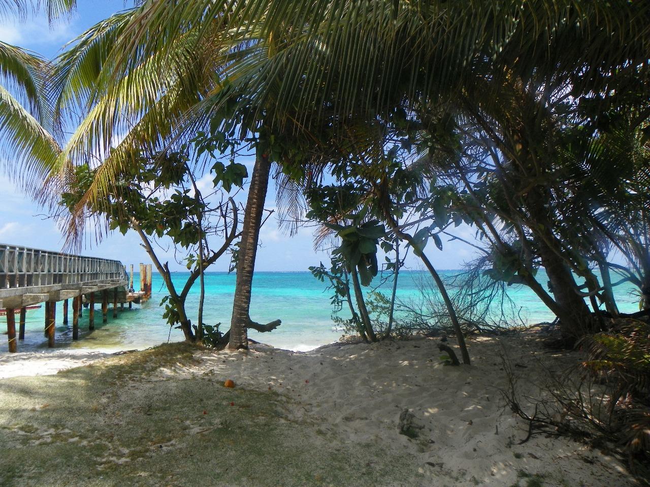 Johnny Cay - San Andrés Islas - Colombia - Colombiatours.travel - Blog - San Andrés Islas mucho más que mar