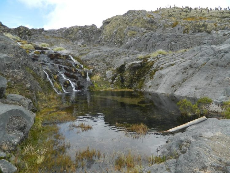 Los Nevados National Natural Park - Colombia - Nevado del Ruiz - Travel Plans - Rates - How to get there