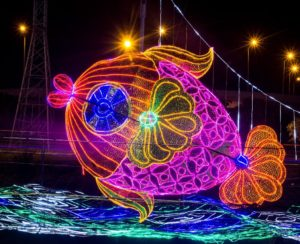 Medellin Lights Tour - Christmas Lighting - Colombia - Tourist Plan