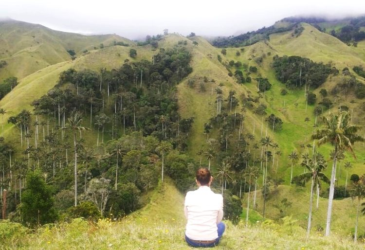 Divisando Valle del Cocora